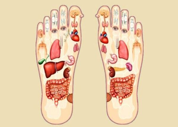 Công dụng khi massage bàn chân với các cơ quan khác trên cơ thể