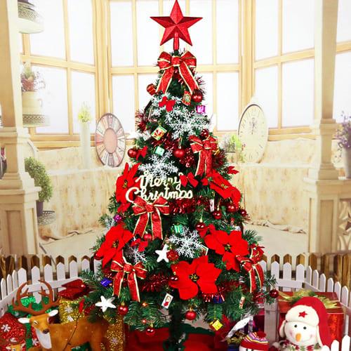 Cây thông Noel