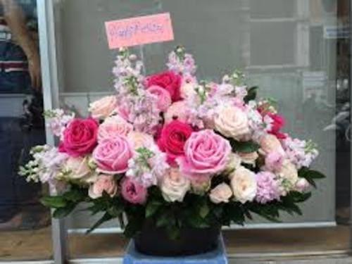 Hoa tươi tặng thầy cô